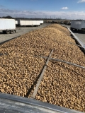 Photo submitted by Andy Irwin (Commodity: peanuts)