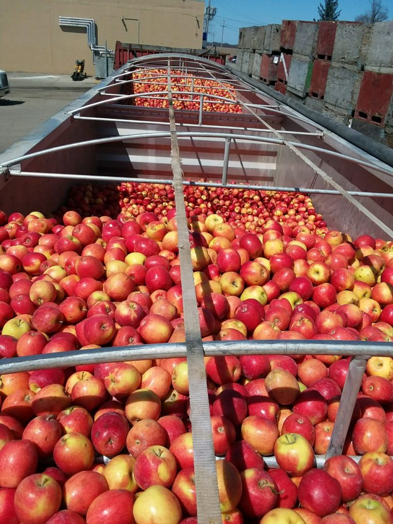 load of apples